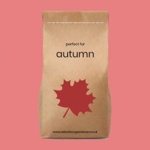 Premium Autumn Lawn Feed