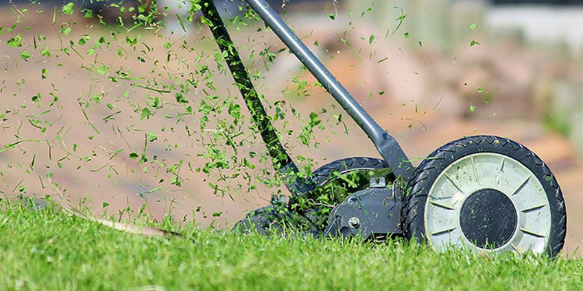How-to-take-care-of-my-lawn-year-round