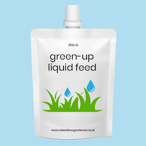Summer Liquid Lawn Feed UK