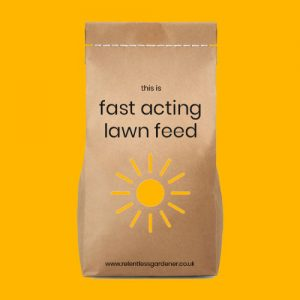 Fast Acting Spring & Summer Lawn Feed