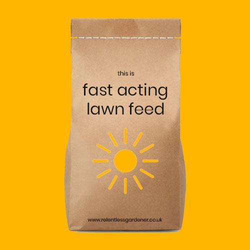 Fast Acting Spring Summer Lawn Feed Fertiliser UK