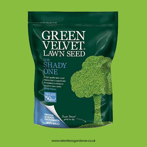 Premium Shade Grass Seed Green Velvet