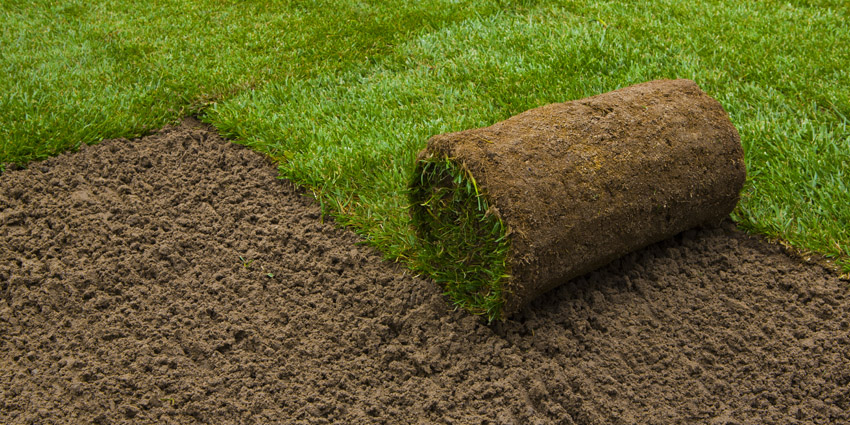 How to Prepare the Ground for Turf
